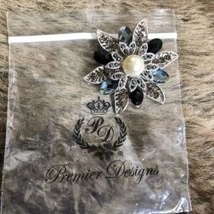 Brooch/Pin/Charm